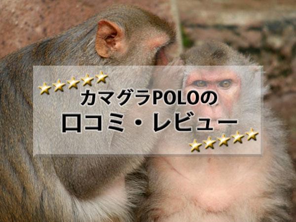 カマグラPOLO口コミ・レビュー